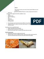stem design brief