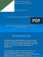 Proyecto Negocio Restaurante Nuevo Milenio