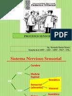 Capitulo 4 Procesos Sensoriales