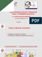 CITOSOL-CLASE.pdf