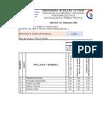 Instrumento de Autoevaluacion de Trabajos Practicos Grupales