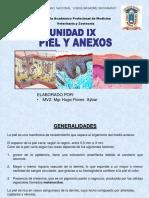 3.-PIEL-ANEXOS-HISTOLOGIA