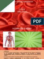 Sistema Cardiovascular -Circulatorio