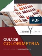 E-book Guia de Colorimetria Capilar.pdf