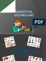 Essential Vocabulary Animal World