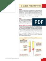 Sangre y Hematopoyesis-Kierszenbaum 3a_Ed-OCR