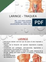 LARINGE-TRAQUEA-1