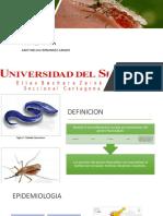 MALARIA PEDIATRIA 2019