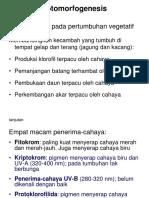Fotomorfogenesis.ppt
