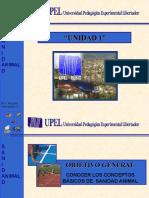 sanidadanimalunidad1-090511153509-phpapp02