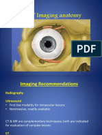 Orbitimaging Anatomy 150215053915 Conversion Gate01