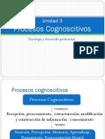 Unidad 3. Procesos Cognoscitivos.pdf