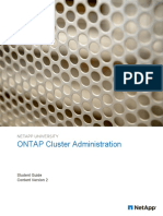 ONTAP guide.pdf