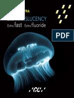 Brochure-GC-Fuji-IX-GP-EXTRA.pdf