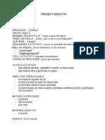 Project Didactic Practica pedagogica