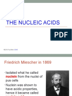 02 the Nucleic Acids