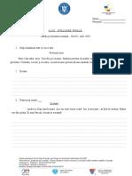 Evaluare Finala Niv 1