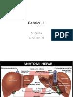 Pemicu 1 sinta hepato.pptx