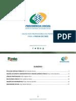 e-book-inss2018-21052018-1.pdf