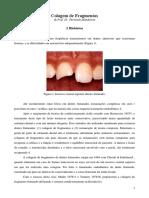 Colagem de Fragmentos.pdf