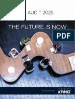 Us Audit 2025 Final Report