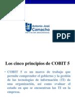 Principios de COBIT.pdf