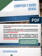 Preeclampsia y Daño Renal