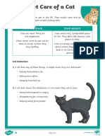 Pet Care of a Cat Differentiated Reading Comprehension Activity.pdf