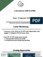 Dua Jenis Hiu Mako, 7 jenis Pari, dan Teripang Harus Diatur Perdagangannya Karena Sudah Masuk Daftar Apendiks 2 CITES pada COP ke 18 Agustus 2019