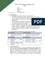 RPP Presentation