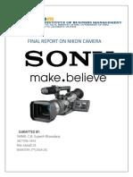 Final Report Sony
