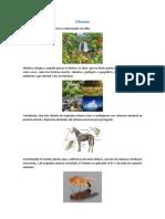 Glosario Biotico y Abioticos