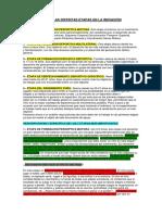 Descripcion de Las Distintas Etapas en La Iniciacion Deportiva