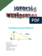 Matematicas Resueltos (Soluciones) Triángulos Rectángulos Nivel I 1º Bachillerato