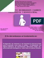Dx de Embarazo, Cambios Fisiologicos y Estatica Fetal (2)