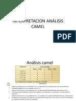 Interpretacion Análisis Camel