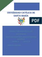 ENSAYO PARTICULAS MAGNETICAS.docx