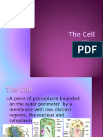 bio_cell.pdf