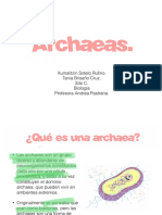 Archae As