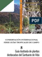 GUIA ILUSTRADA PLANTAS BESOTES (2).pdf