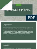 Los Angiospermas