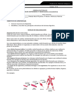 Guía Sistemas y Niveles Nota Acumulativa