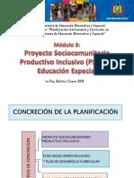 Proyecto Sociocomunitario Productivo Inclusivo Educacin Especial