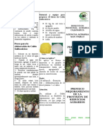TRIPTICO CALDOS MINERALES