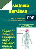 sistema-nervioso-1223743498164505-9.pdf