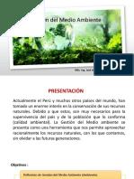 Gestión Del Medio Ambiente 1