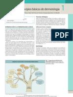 1 Principios básicos de dermatología.pdf