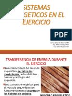 SISTEMAS ENERGÉTICOS EN EL EJERCICIO FÍSICO
