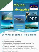 Pernambuco Um Mar de Opcoes