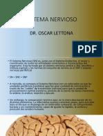 11) SISTEMA NERVIOSO.pptx